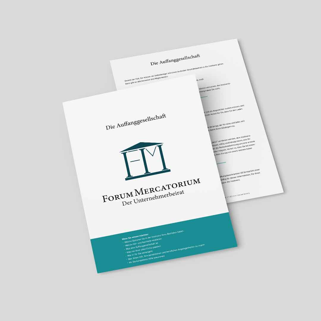 PDF-Download zum Thema Auffanggesellschaft