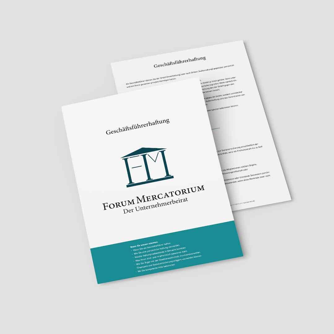 PDF-Download zum Thema Geschäftsführerhaftung